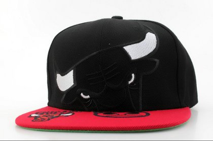 Chicago Bulls Hat QH 150426 208
